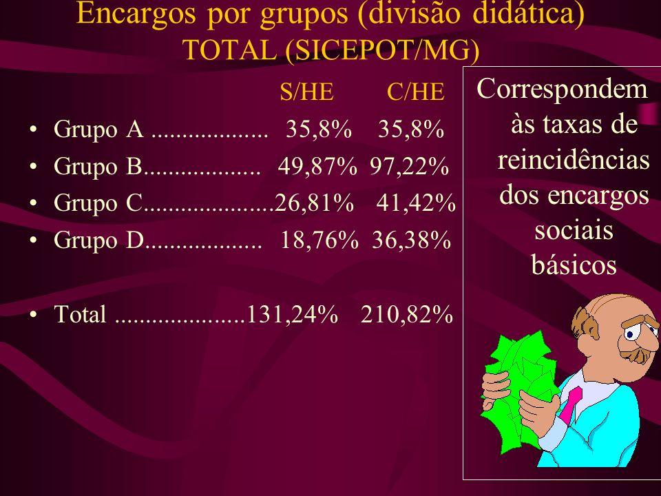 Encargos por grupos (divisão didática) GRUPO D (SICEPOT/MG) S/HE C/HE Grupo A x Grupo B.......................