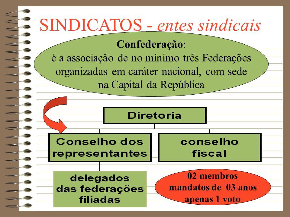 SINDICATOS - entes sindicais Federação: é um grupo de no mínimo cinco sindicatos da mesma categoria profissional e ou econômica, tendo como base terri