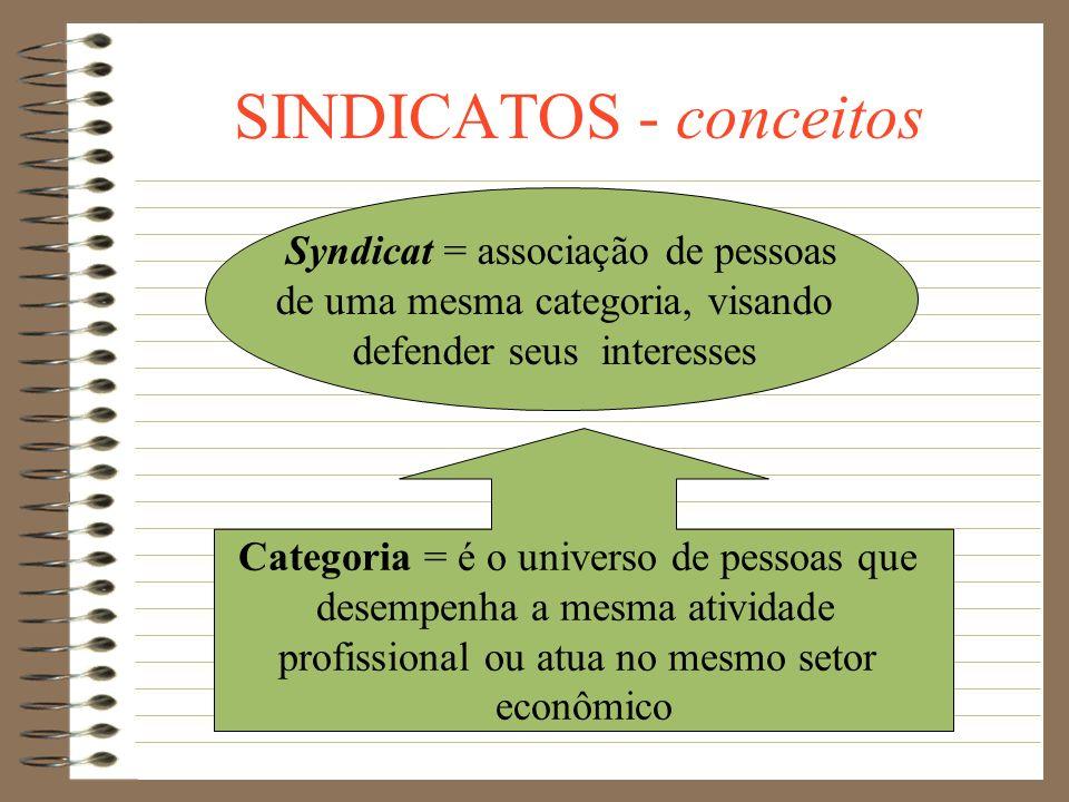 SINDICATOS Conceitos Entes sindicais Princípios Constitucionais Generalidades