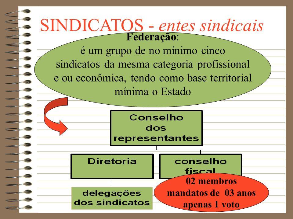 SINDICATOS - entes sindicais Sindicato é o grupo que atua na base da estrutura sindical. O município é considerado a área territorial mínima de atuaçã
