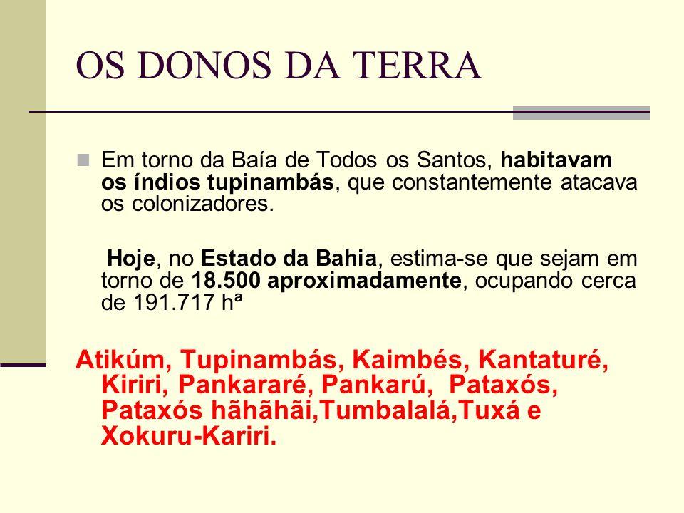 OS DONOS DA TERRA Em torno da Baía de Todos os Santos, habitavam os índios tupinambás, que constantemente atacava os colonizadores. Hoje, no Estado da
