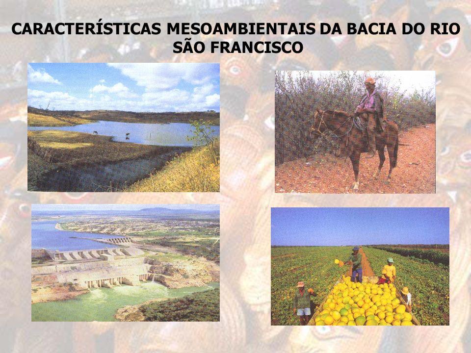 CARACTERÍSTICAS MESOAMBIENTAIS DA BACIA DO RIO SÃO FRANCISCO