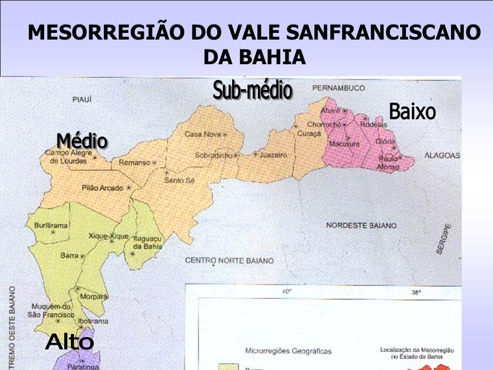 MESORREGIÃO DO VALE SANFRANCISCANO DA BAHIA