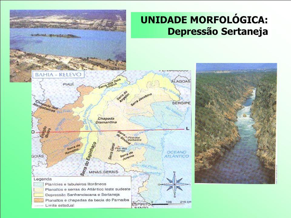 UNIDADE MORFOLÓGICA: Depressão Sertaneja