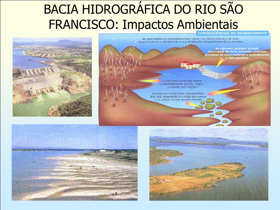 BACIA HIDROGRÁFICA DO RIO SÃO FRANCISCO: Impactos Ambientais