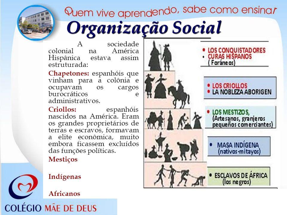 Organização Social A sociedade colonial na América Hispânica estava assim estruturada: Chapetones: espanhóis que vinham para a colônia e ocupavam os c