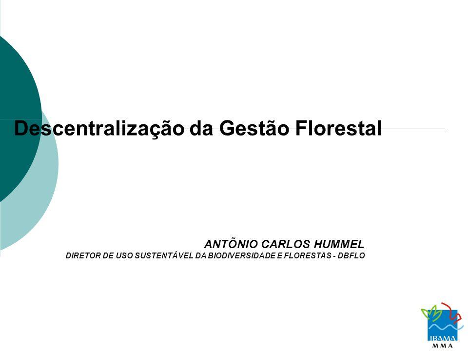 Descentralização da Gestão Florestal ANTÕNIO CARLOS HUMMEL DIRETOR DE USO SUSTENTÁVEL DA BIODIVERSIDADE E FLORESTAS - DBFLO