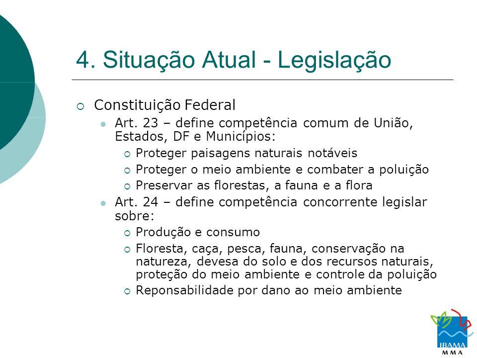 4. Situação Atual - Legislação Constituição Federal Art. 23 – define competência comum de União, Estados, DF e Municípios: Proteger paisagens naturais