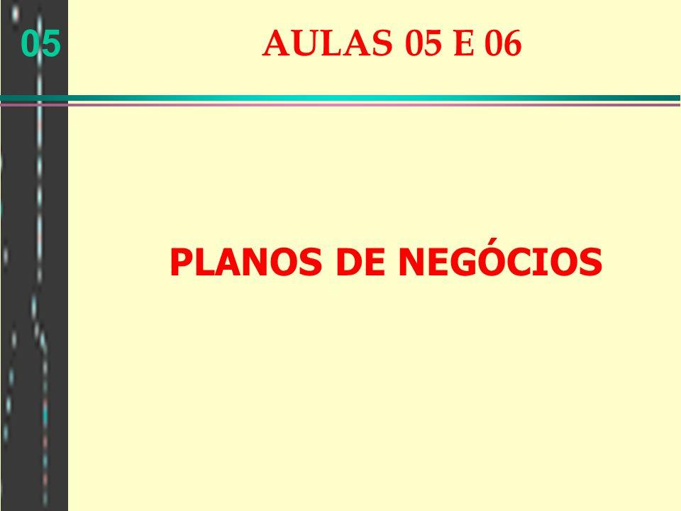 05 AULAS 05 E 06 PLANOS DE NEGÓCIOS
