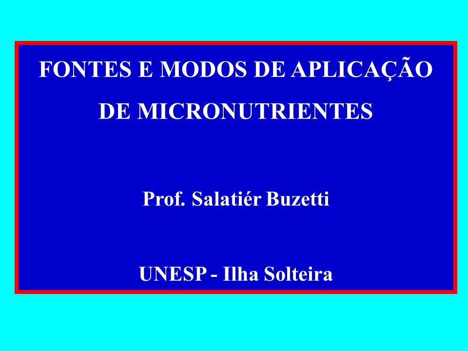 FONTES E MODOS DE APLICAÇÃO DE MICRONUTRIENTES Prof. Salatiér Buzetti UNESP - Ilha Solteira