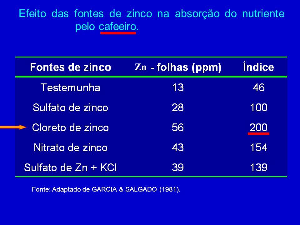 Efeito do horário de aplicação do adubo foliar na cultura da soja. Fonte: ROSOLEM (1986)