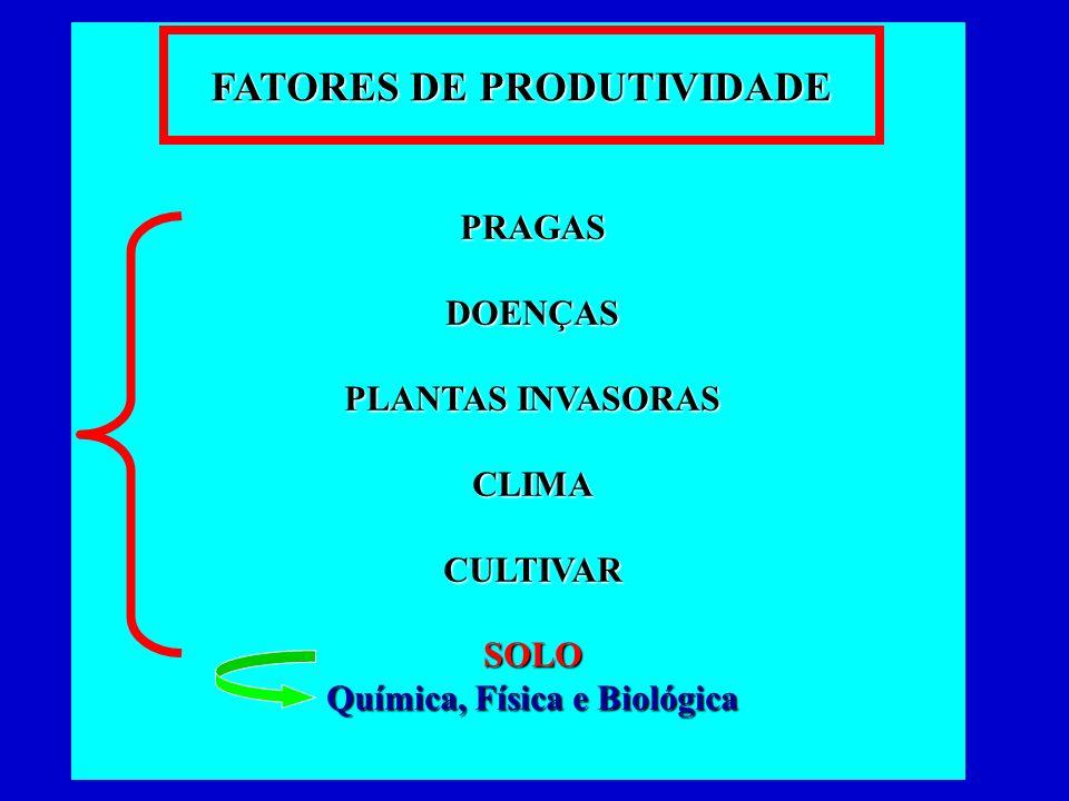PRAGASDOENÇAS PLANTAS INVASORAS CLIMACULTIVARSOLO Química, Física e Biológica FATORES DE PRODUTIVIDADE