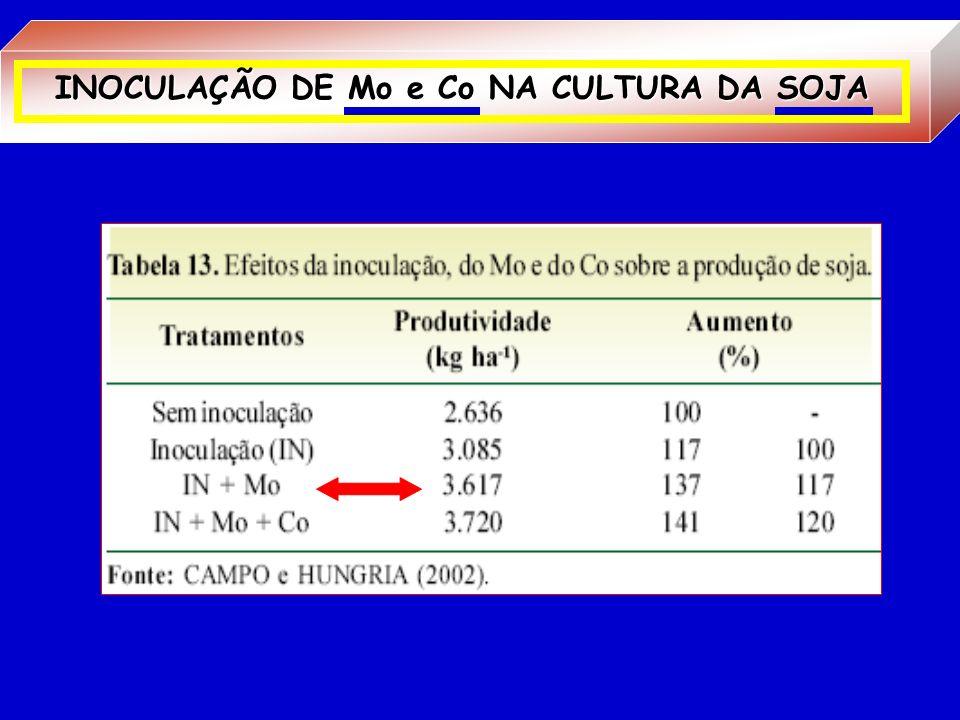 Co Componente Vit. B12 Coenzima Cobamida PrecursoraLEGHEMOGLOBINA FIXAÇÃO BIOLÓGICA DE NITROGÊNIO