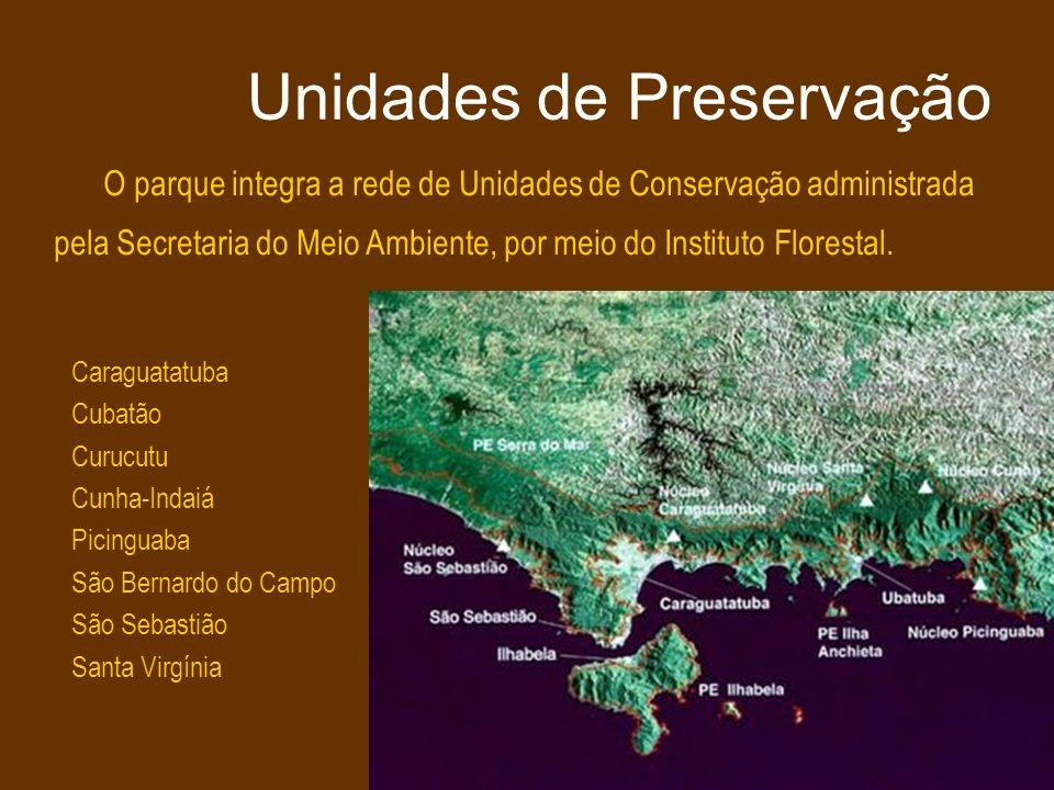 Centro Cultural PLANTA BAIXA s/escala MADEIRA, VIDRO, SAPE PLANTA COBERTURA s/escala