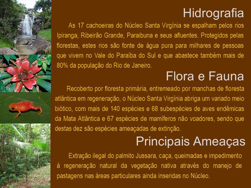 Hidrografia As 17 cachoeiras do Núcleo Santa Virgínia se espalham pelos rios Ipiranga, Ribeirão Grande, Paraibuna e seus afluentes. Protegidos pelas f