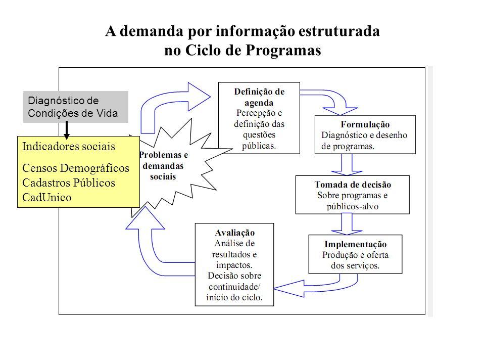 Diagnóstico de Condições de Vida A demanda por informação estruturada no Ciclo de Programas Indicadores sociais Censos Demográficos Cadastros Públicos