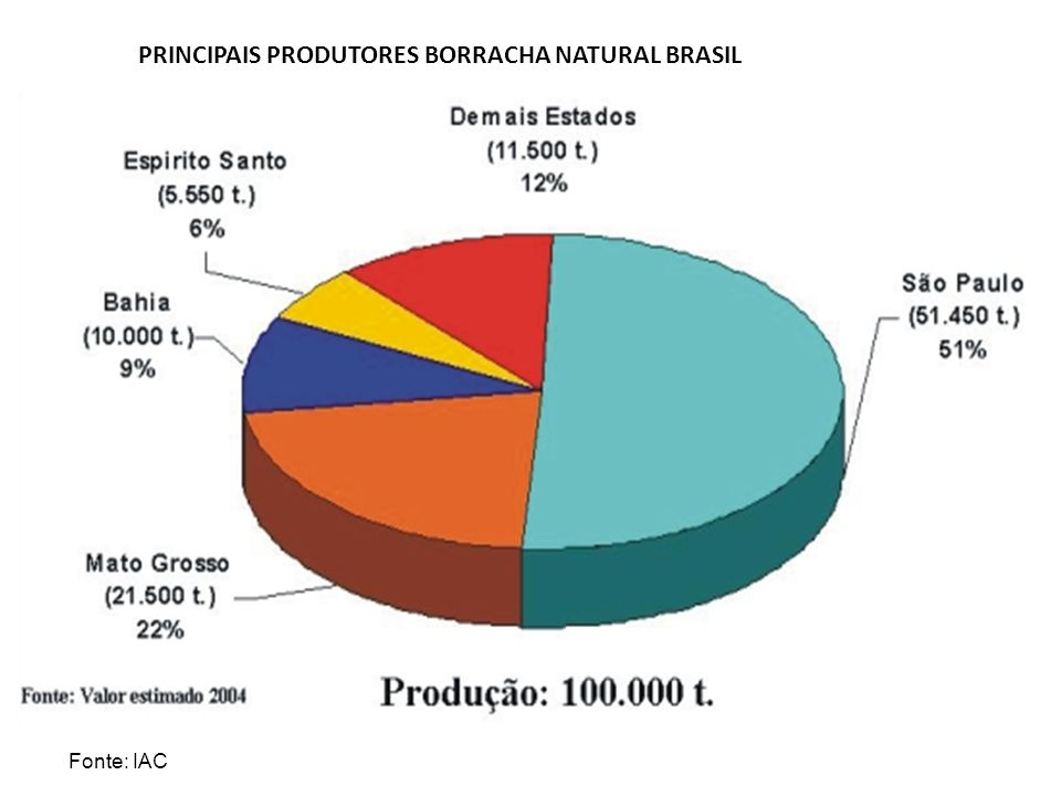 PRINCIPAIS PRODUTORES BORRACHA NATURAL BRASIL Fonte: IAC