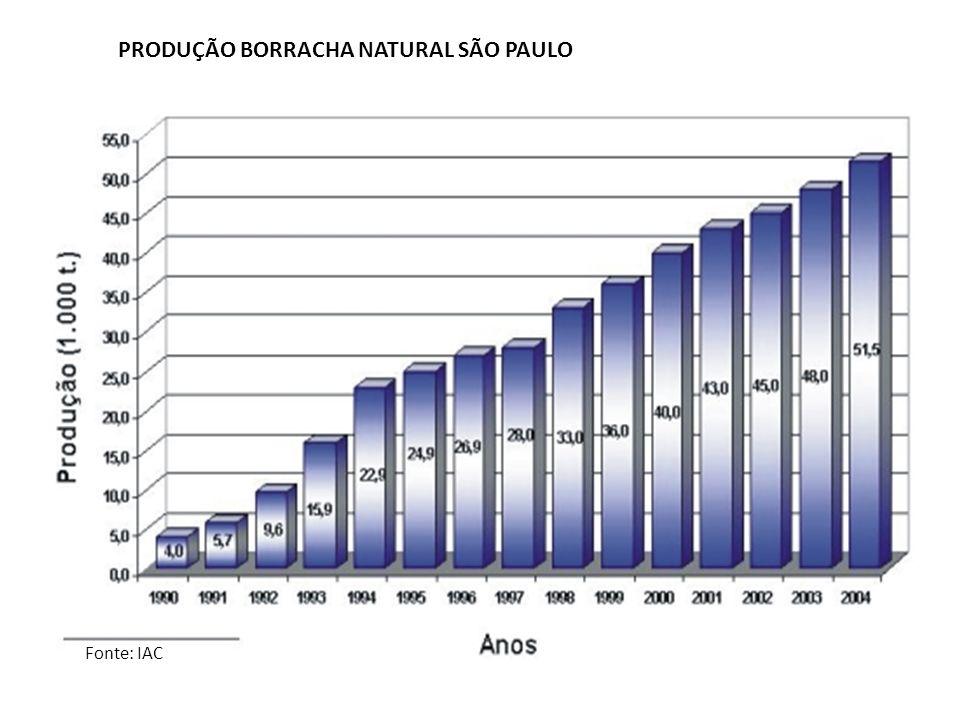 PRODUÇÃO BORRACHA NATURAL SÃO PAULO Fonte: IAC