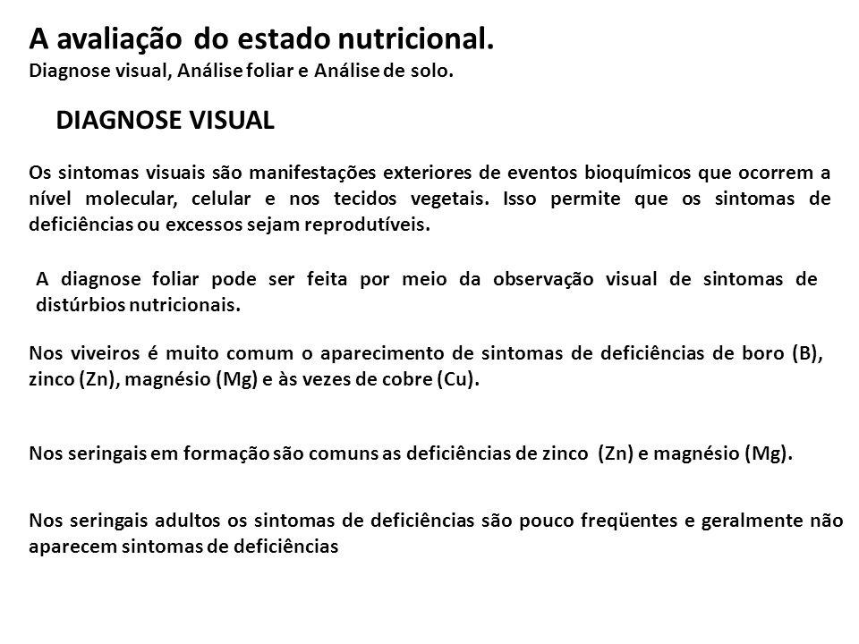 A diagnose foliar pode ser feita por meio da observação visual de sintomas de distúrbios nutricionais. Os sintomas visuais são manifestações exteriore