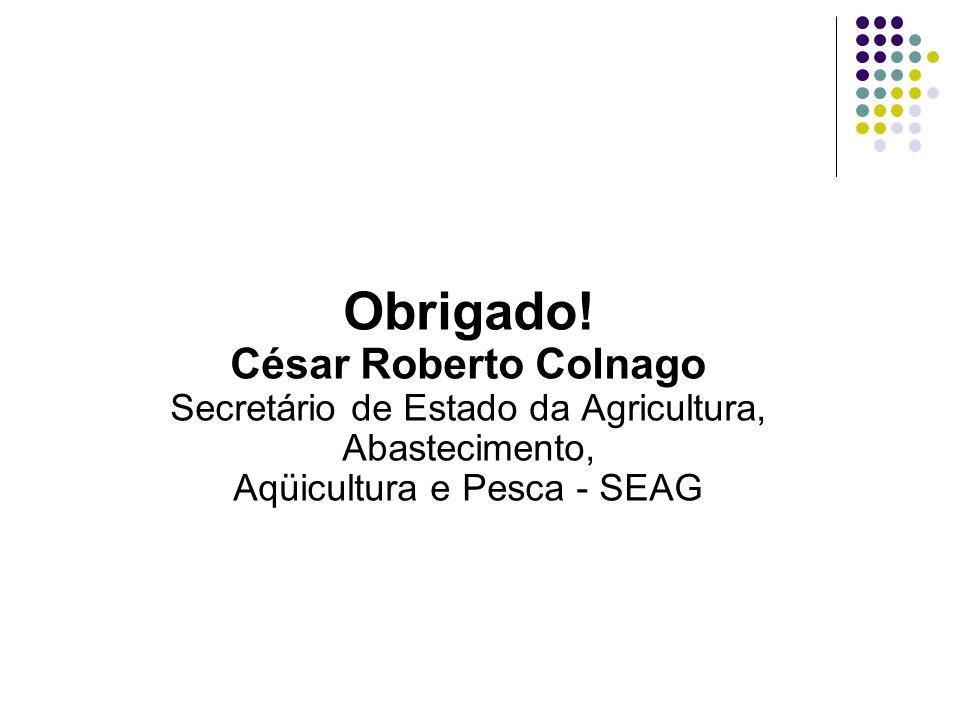 Obrigado! César Roberto Colnago Secretário de Estado da Agricultura, Abastecimento, Aqüicultura e Pesca - SEAG