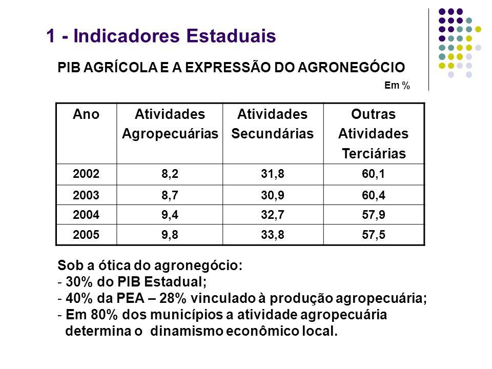 1 - Indicadores Estaduais PIB AGRÍCOLA E A EXPRESSÃO DO AGRONEGÓCIO Em % Sob a ótica do agronegócio: - 30% do PIB Estadual; - 40% da PEA – 28% vincula