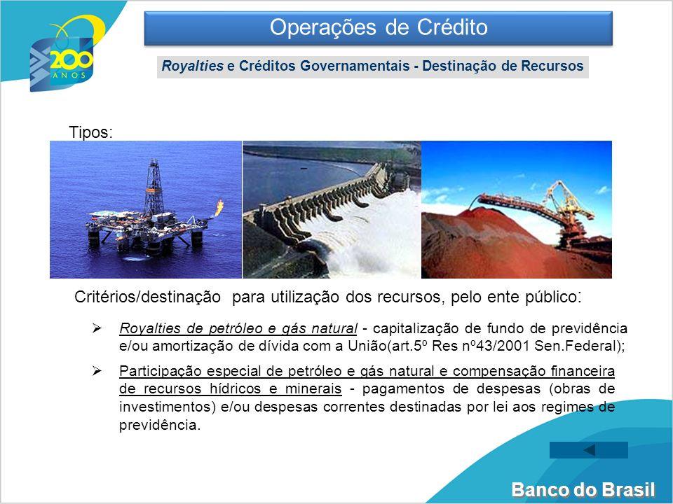 Banco do Brasil Royalties de petróleo e gás natural - capitalização de fundo de previdência e/ou amortização de dívida com a União(art.5º Res nº43/200