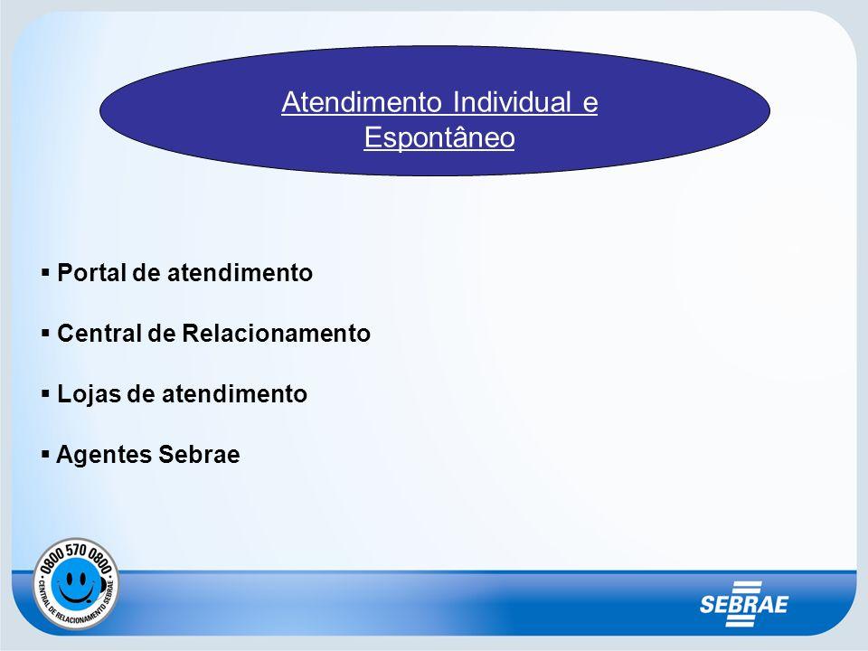 Portal de atendimento Central de Relacionamento Lojas de atendimento Agentes Sebrae Atendimento Individual e Espontâneo