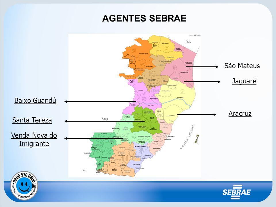 AGENTES SEBRAE São Mateus Jaguaré Aracruz Baixo Guandú Santa Tereza Venda Nova do Imigrante