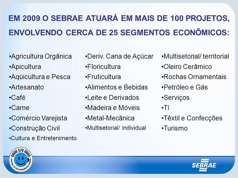 EM 2009 O SEBRAE ATUARÁ EM MAIS DE 100 PROJETOS, ENVOLVENDO CERCA DE 25 SEGMENTOS ECONÔMICOS: Agricultura Orgânica Apicultura Aqüicultura e Pesca Arte