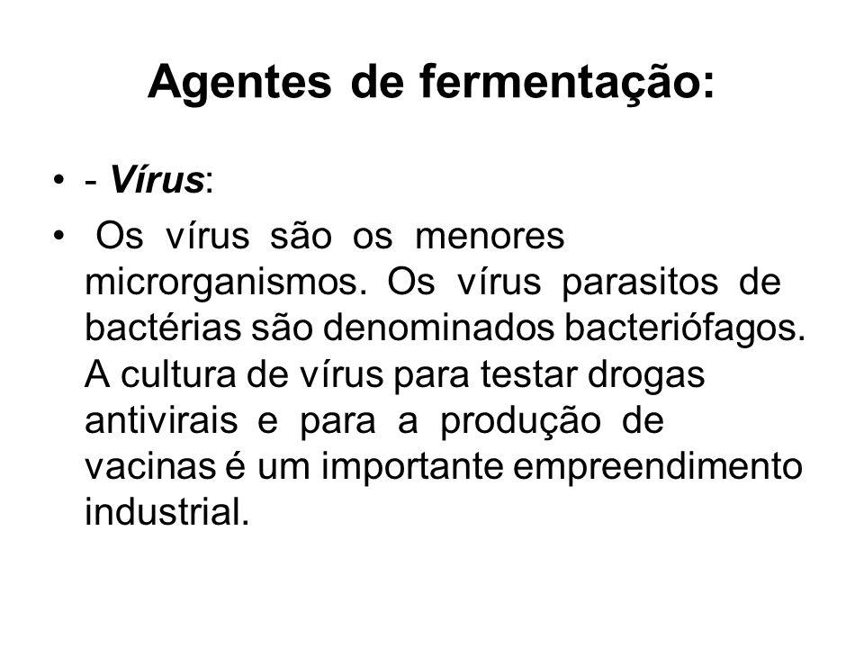 Agentes de fermentação: - Vírus: Os vírus são os menores microrganismos.