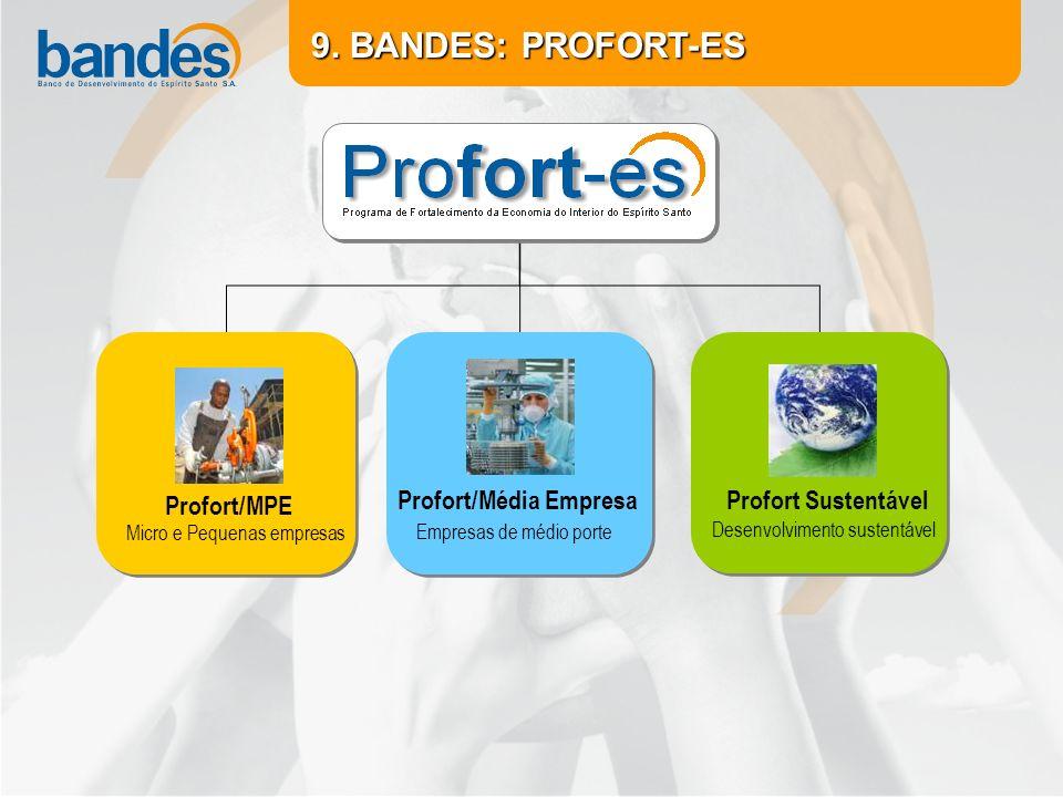 Micro e Pequenas empresas Profort/MPE Empresas de médio porte Profort/Média Empresa Desenvolvimento sustentável Profort Sustentável 9.
