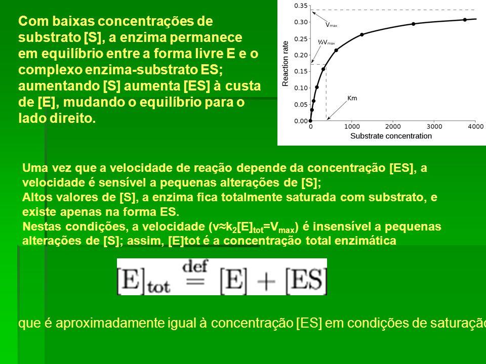 Com baixas concentrações de substrato [S], a enzima permanece em equilíbrio entre a forma livre E e o complexo enzima-substrato ES; aumentando [S] aum