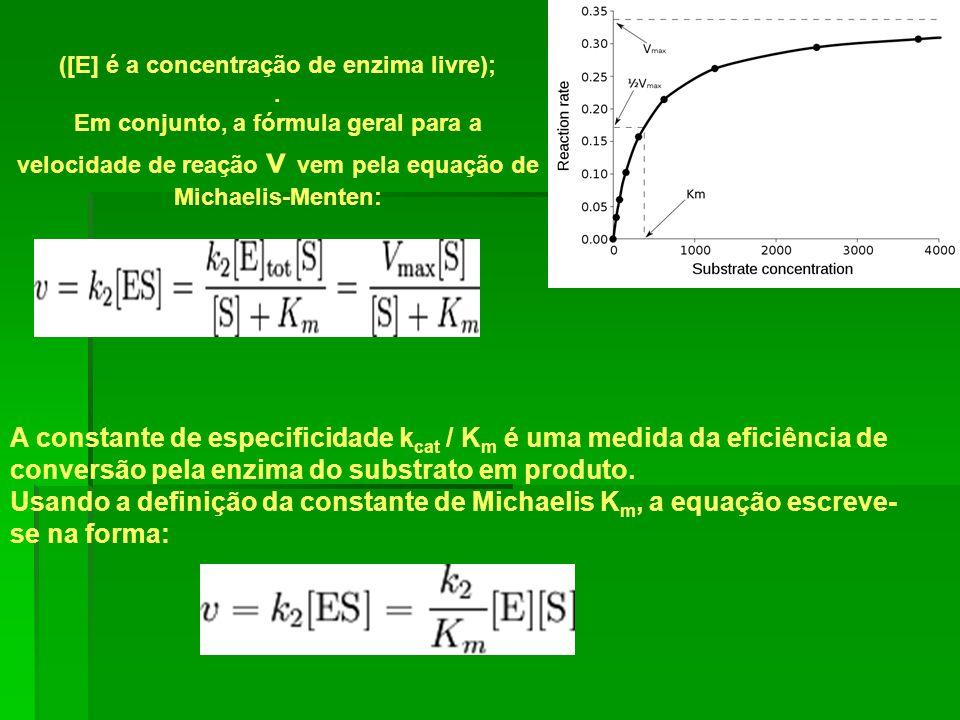 ([E] é a concentração de enzima livre);. Em conjunto, a fórmula geral para a velocidade de reação v vem pela equação de Michaelis-Menten: A constante