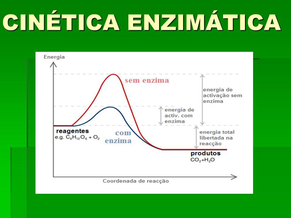 A linha em vermelho representa a reação na ausência de catalisador; A linha em azul na presença de enzima.