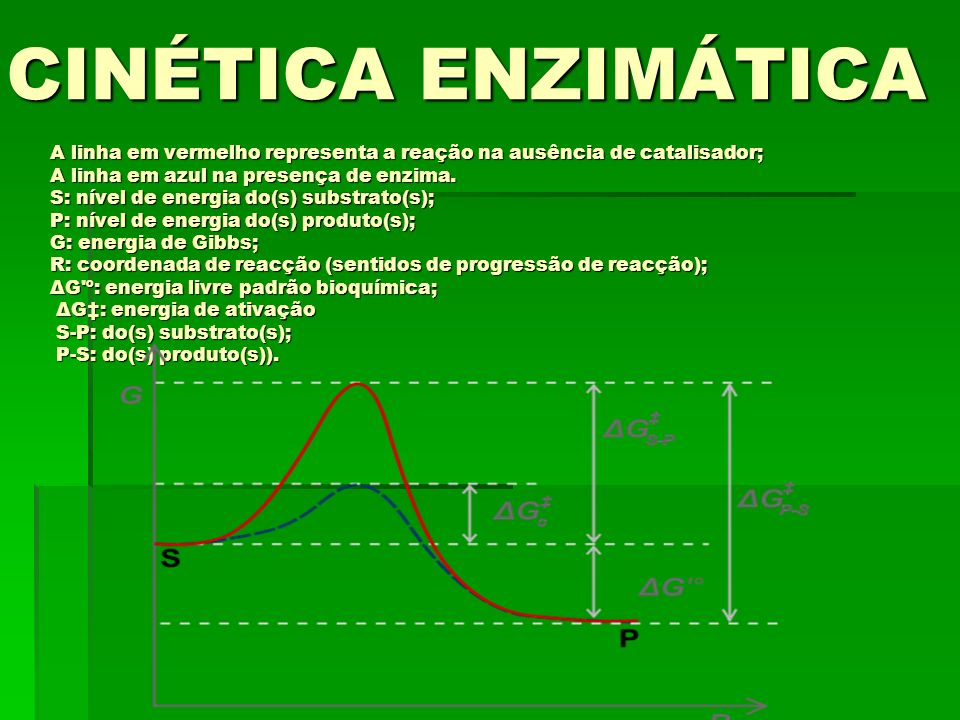 A linha em vermelho representa a reação na ausência de catalisador; A linha em azul na presença de enzima. S: nível de energia do(s) substrato(s); P: