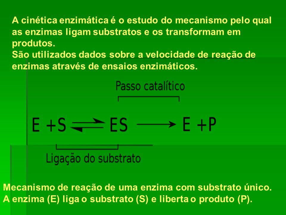 A cinética enzimática é o estudo do mecanismo pelo qual as enzimas ligam substratos e os transformam em produtos. São utilizados dados sobre a velocid
