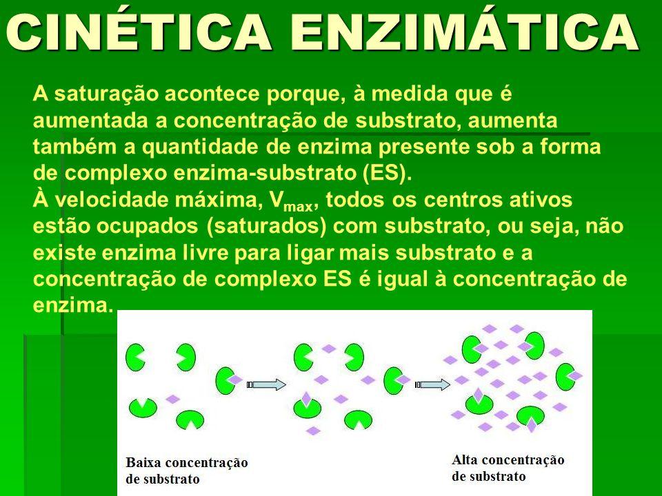 A saturação acontece porque, à medida que é aumentada a concentração de substrato, aumenta também a quantidade de enzima presente sob a forma de compl