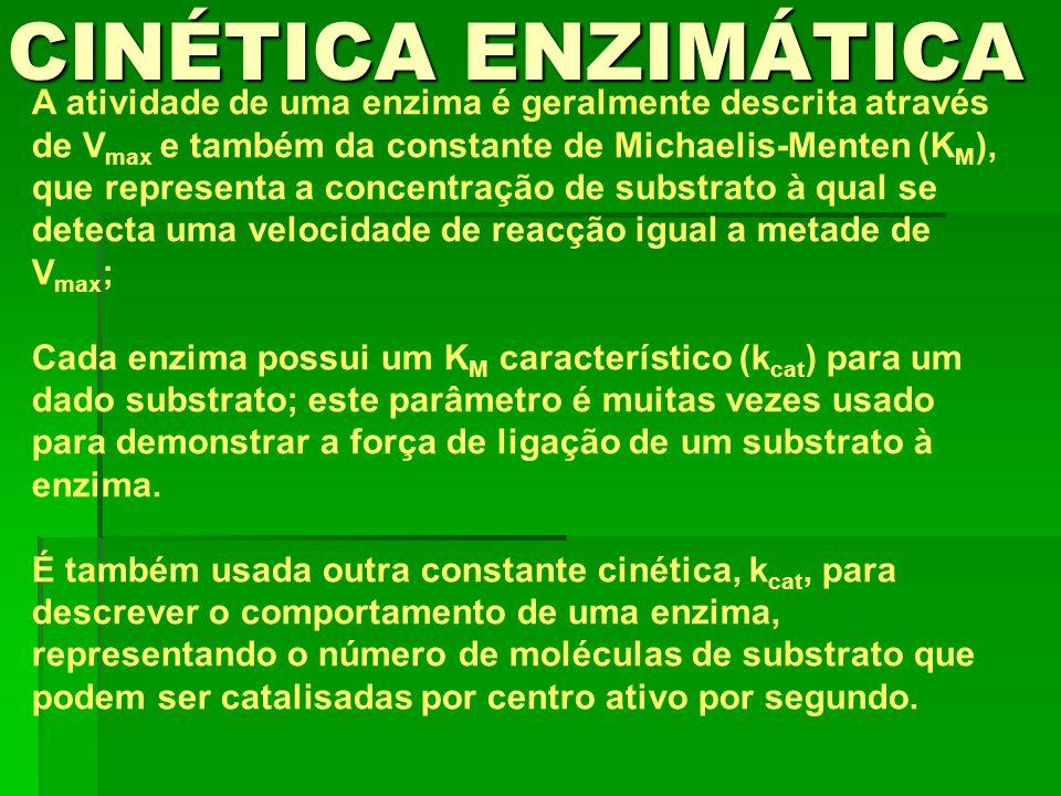 A atividade de uma enzima é geralmente descrita através de V max e também da constante de Michaelis-Menten (K M ), que representa a concentração de su