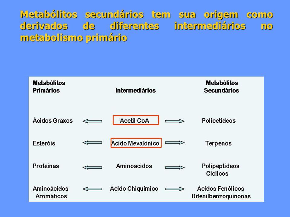Metabólitos secundários tem sua origem como derivados de diferentes intermediários no metabolismo primário