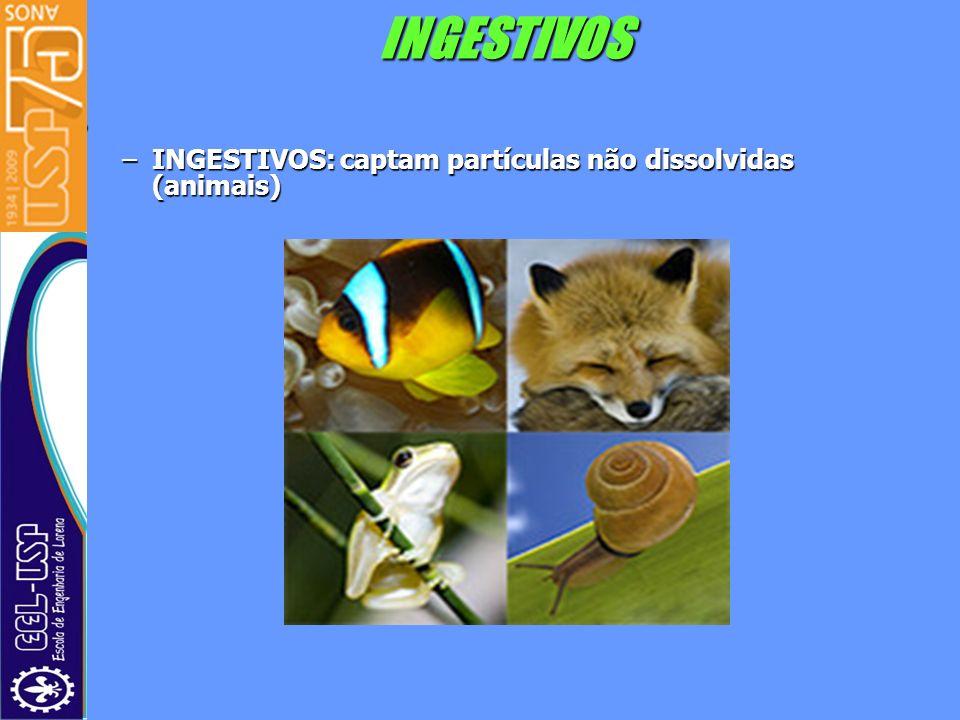 INGESTIVOS –INGESTIVOS: captam partículas não dissolvidas (animais)