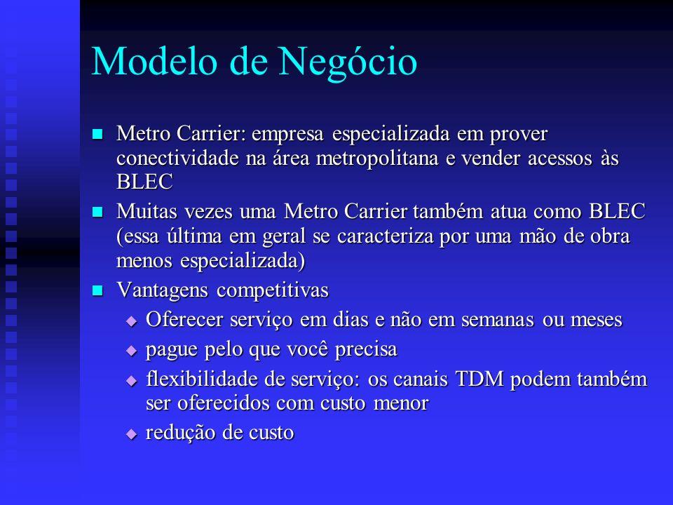Modelo de Negócio Metro Carrier: empresa especializada em prover conectividade na área metropolitana e vender acessos às BLEC Metro Carrier: empresa e