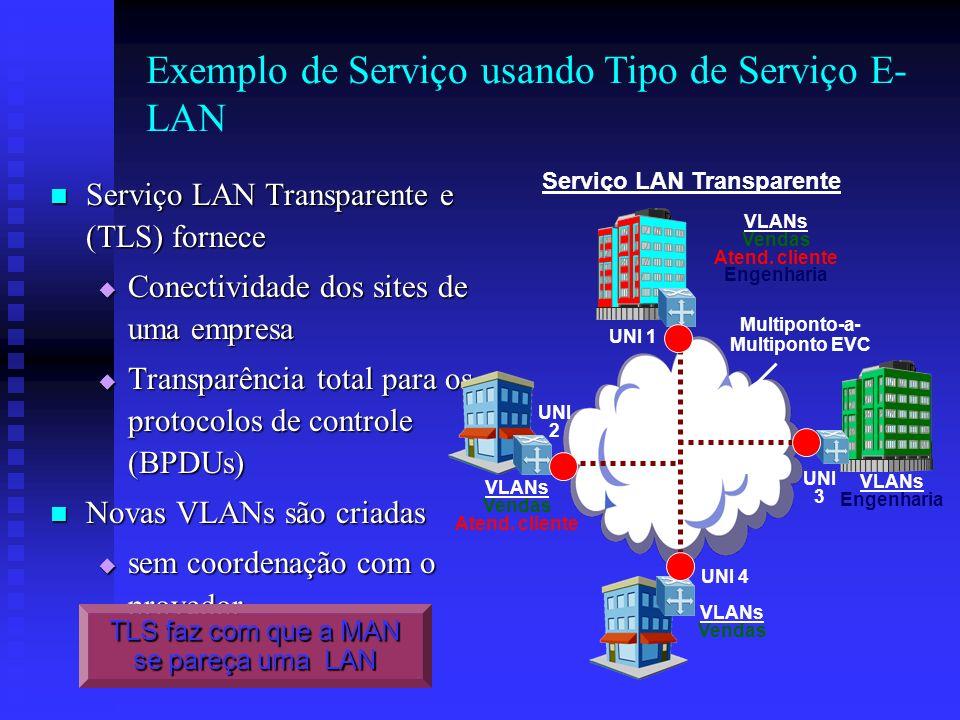 Exemplo de Serviço usando Tipo de Serviço E- LAN Serviço LAN Transparente e (TLS) fornece Serviço LAN Transparente e (TLS) fornece Conectividade dos s
