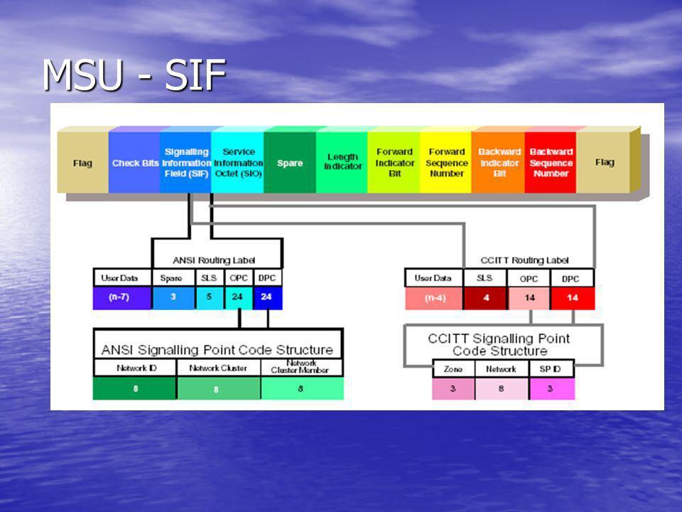 MSU - SIF