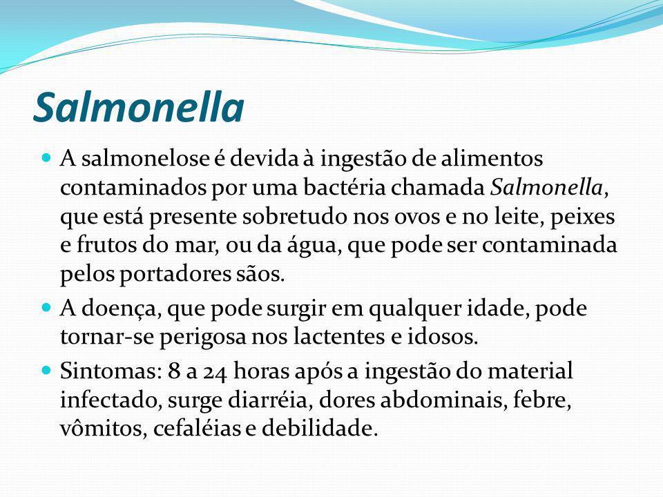 Salmonella A salmonelose é devida à ingestão de alimentos contaminados por uma bactéria chamada Salmonella, que está presente sobretudo nos ovos e no