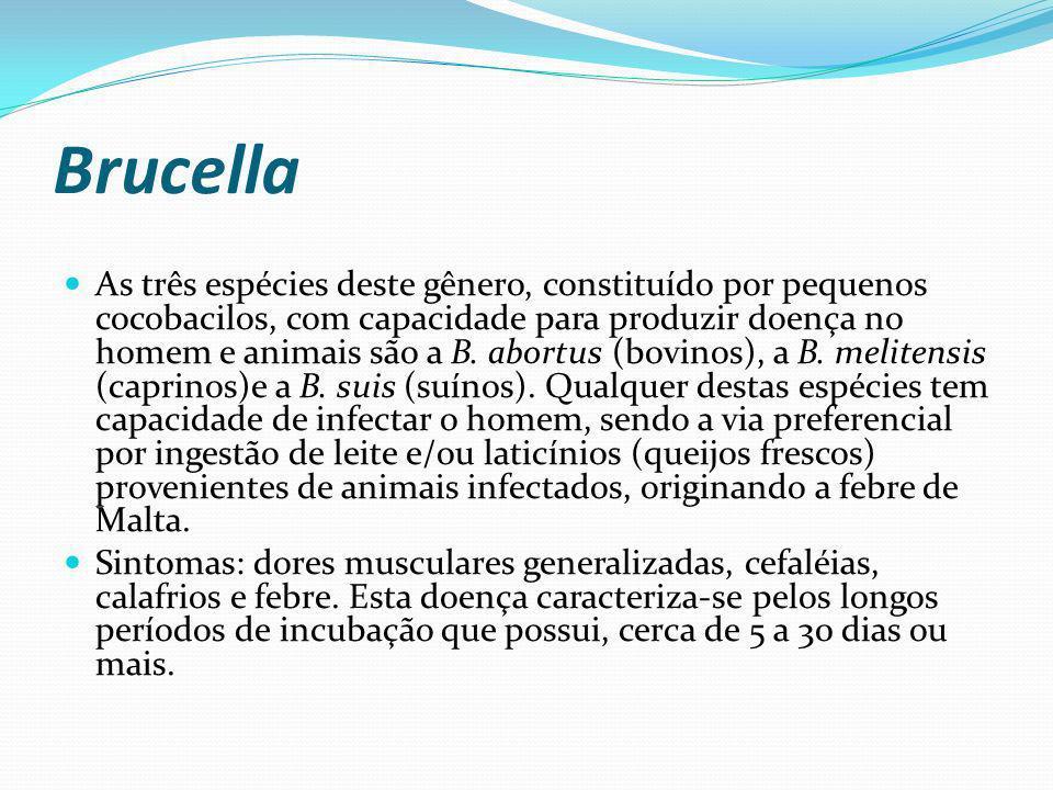 Brucella As três espécies deste gênero, constituído por pequenos cocobacilos, com capacidade para produzir doença no homem e animais são a B. abortus