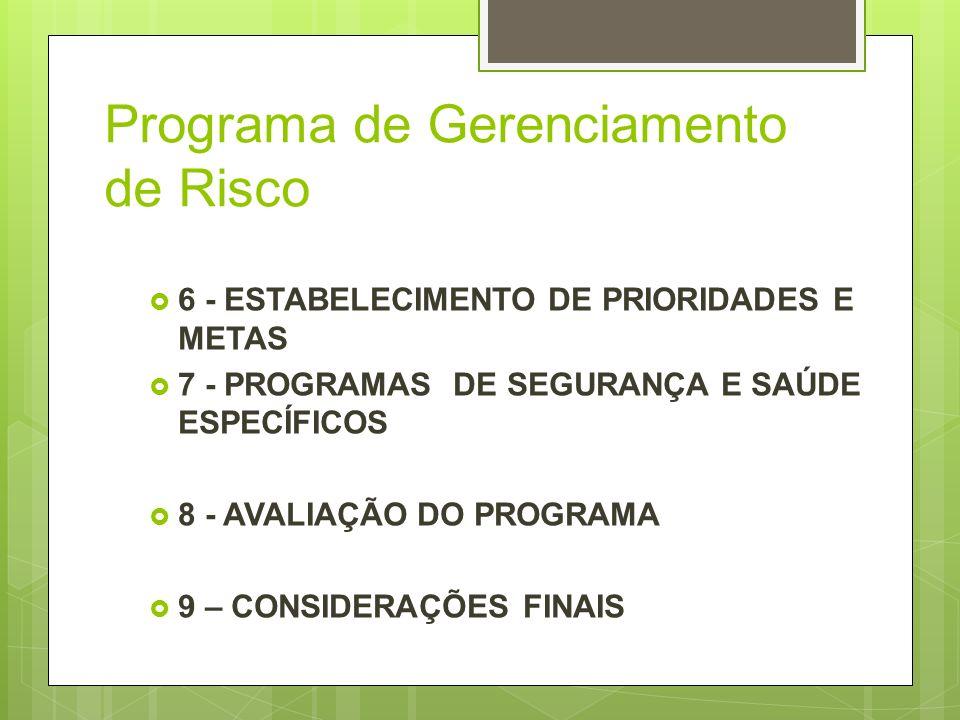 Programa de Gerenciamento de Risco 6 - ESTABELECIMENTO DE PRIORIDADES E METAS 7 - PROGRAMAS DE SEGURANÇA E SAÚDE ESPECÍFICOS 8 - AVALIAÇÃO DO PROGRAMA