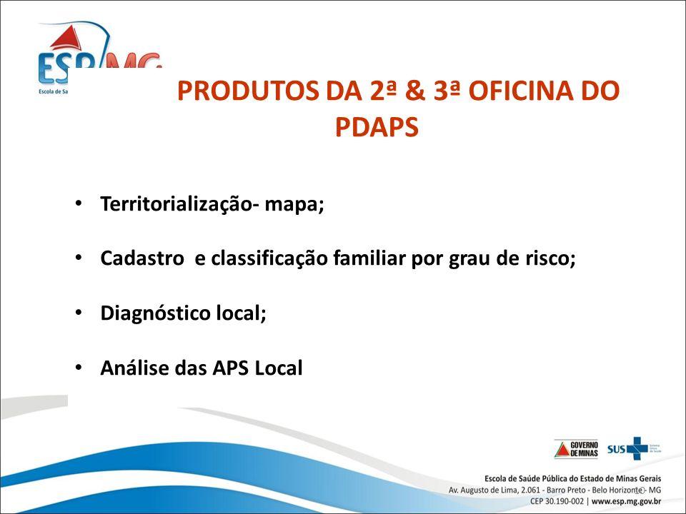 10 PRODUTOS DA 2ª & 3ª OFICINA DO PDAPS Territorialização- mapa; Cadastro e classificação familiar por grau de risco; Diagnóstico local; Análise das A