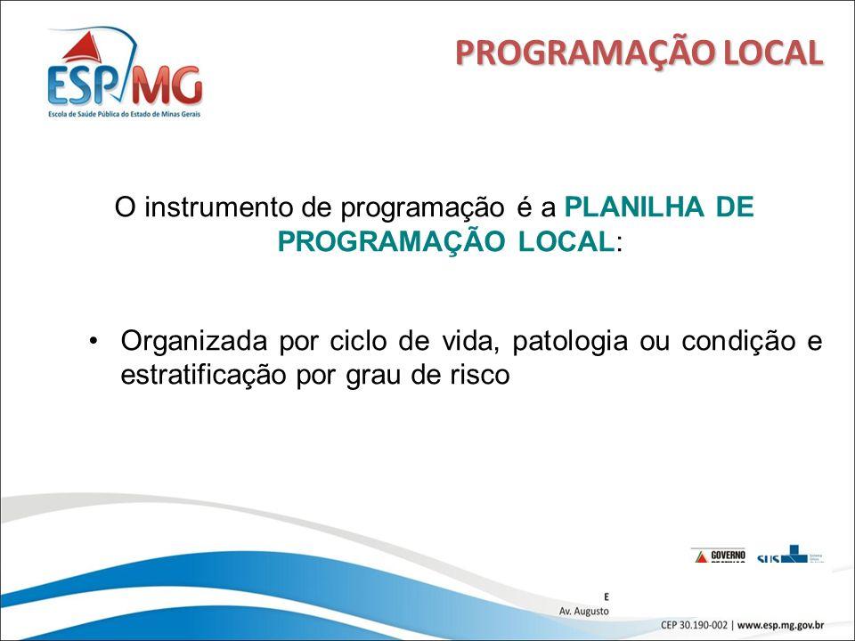15 PROGRAMAÇÃO LOCAL O instrumento de programação é a PLANILHA DE PROGRAMAÇÃO LOCAL: Organizada por ciclo de vida, patologia ou condição e estratifica