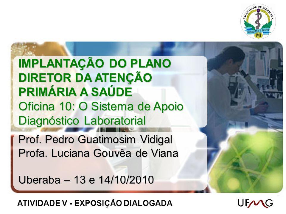 IMPLANTAÇÃO DO PLANO DIRETOR DA ATENÇÃO PRIMÁRIA A SAÚDE Oficina 10: O Sistema de Apoio Diagnóstico Laboratorial Prof. Pedro Guatimosim Vidigal Profa.