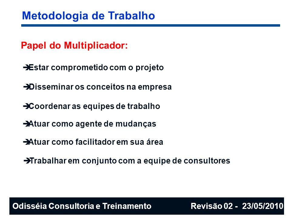 Metodologia de Trabalho Papel do Multiplicador: Estar comprometido com o projeto Disseminar os conceitos na empresa Coordenar as equipes de trabalho A